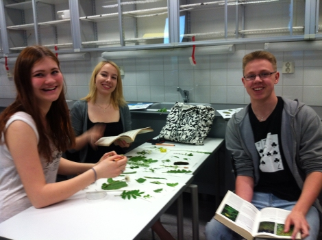 Nokkonen, ratamo… Eniten poimimiaan lajeja tunnistanut ryhmä sai lisäpisteitä lajintunnistuskokeessa. Kuva: Sanna Kokkonen.