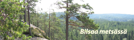 Tilulaiset kävivät Repoveden kansallispuistossa. Kuva: Mika Meller.